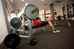 gym-800036