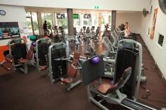 gym-800055