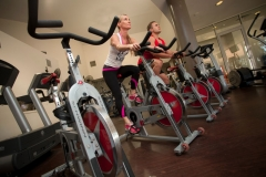 gym-800062