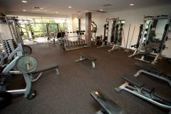 gym-800066
