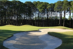 Sanctuary Cove The Pines Hole 8